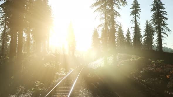 Thumbnail for Flight Over Railway