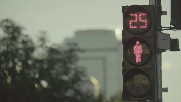 Thumbnail for Traffic Light on the Road During the Day. Close-up. Kyiv. Ukraine