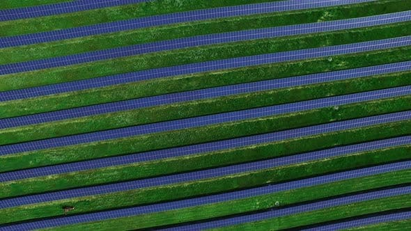 Thumbnail for Solar Farm Producing Clean Renewable Energy