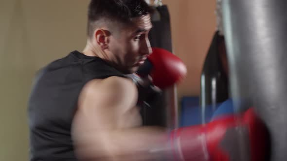 Thumbnail for Strong Boxer Hitting Heavy Bag in Gym