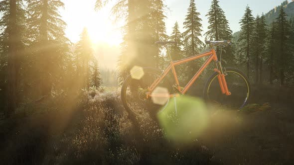 Thumbnail for Bicycle in Mountain Forest at Sunset