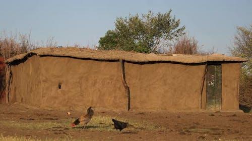 A Maasai hut