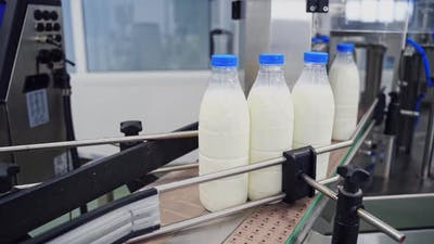 Plastic bottle on the conveyor. Plastic bottles transported on conveyor, automated production line