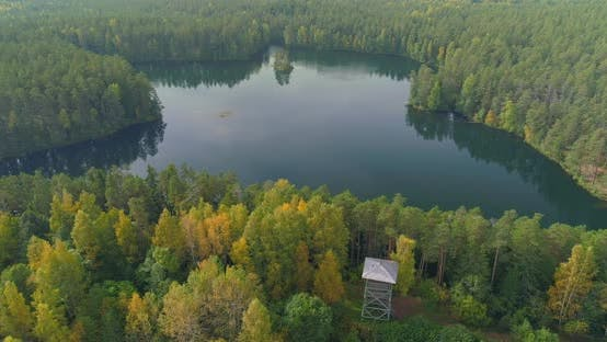 Thumbnail for Aerial Shot Of Wild Forest Lake In Autumn