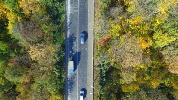Thumbnail for Overhead Aerial Top View Over Car Travelling Through Colorful Forest