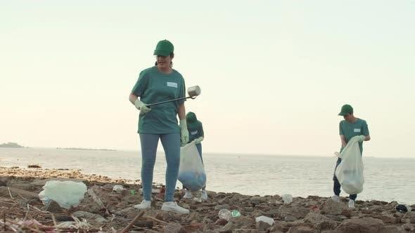 Thumbnail for Three Volunteers Picking up Garbage on Seashore