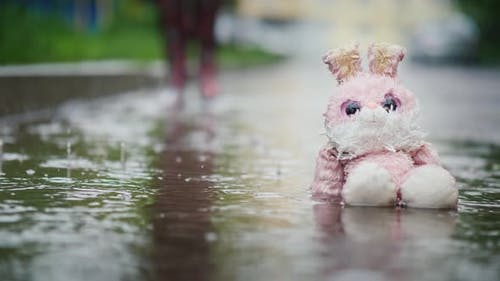 A Damp, Plush Bunny Is Sitting in a Puddle in the Rain