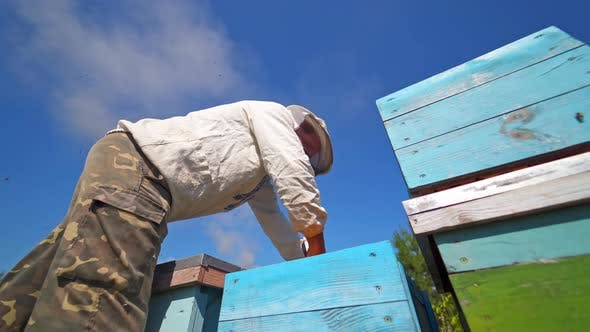Thumbnail for Beekeeper looks into hive