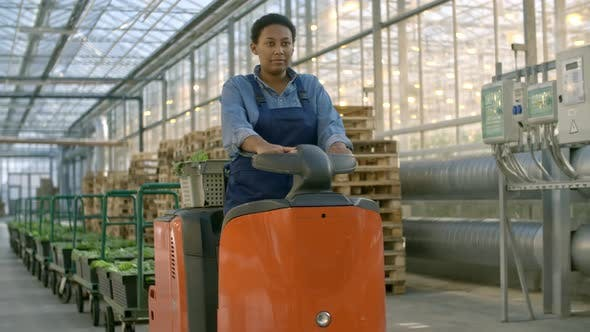Thumbnail for African Greenhouse Worker Driving Forklift