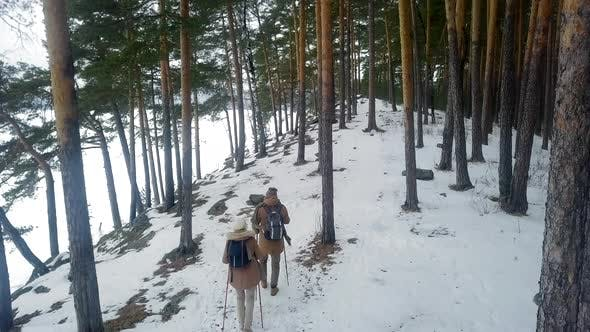 Thumbnail for Man and Woman Sightseeing in Nature Park in Winter