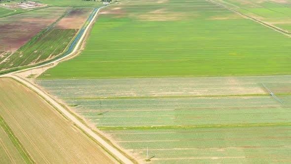 Cover Image for Agricultural Land with Green Crops From Above