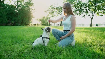 Young Female Dog Owner Training French Bulldog Outdoors.