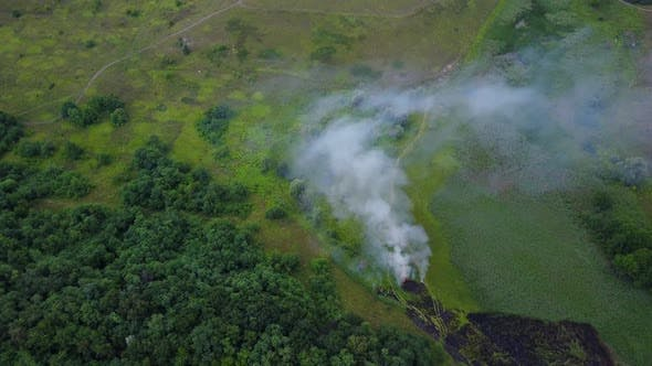 Thumbnail for Aerial Footage From Drone of a Fire Approaching Green Forest. Flight Through a Smoke Over Burning