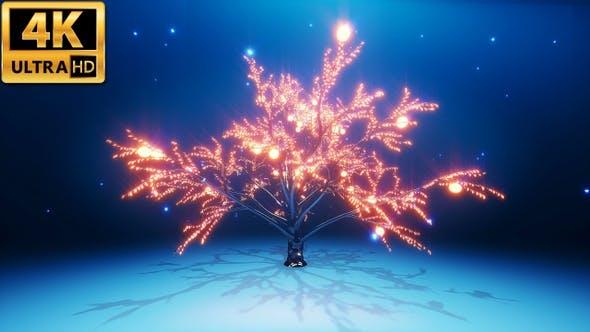 Thumbnail for Magic Tree 4k