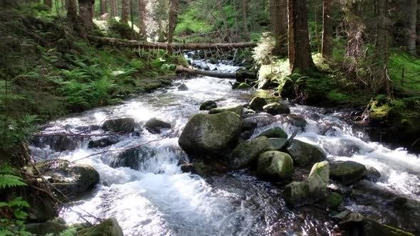 Thumbnail for Beauty Stream on Mountain