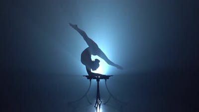 Acrobat Girl in the Circus. Smoke Background. Silhouette