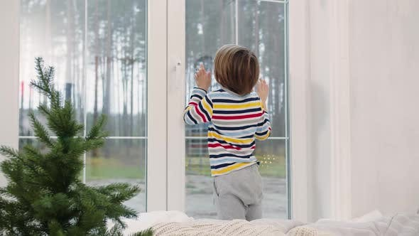 Thumbnail for Child Looks Out the Window at Christmas