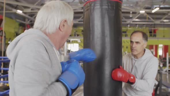 Thumbnail for Two Aged Boxers on Training