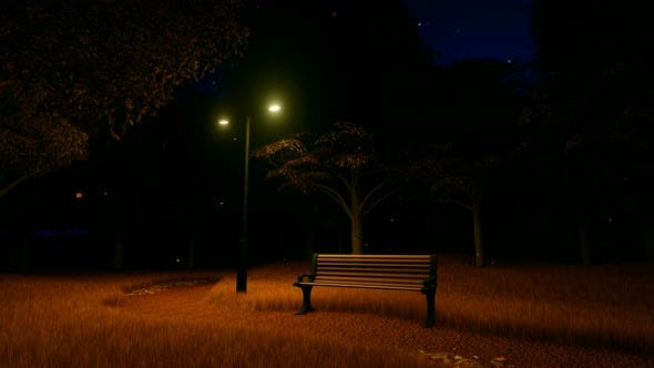 Park With Benche At Night In Autumn