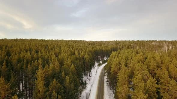 Thumbnail for Empty Road In The Winter Forest