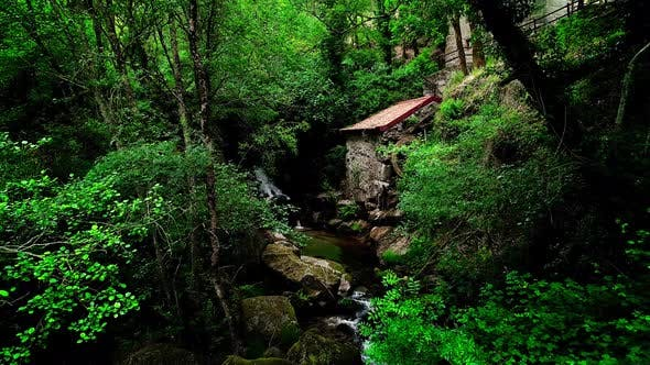 Thumbnail for Water Mill In Green Nature