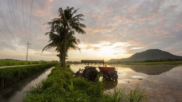 Timelapse sunrise of reflection tractor with coconut tree
