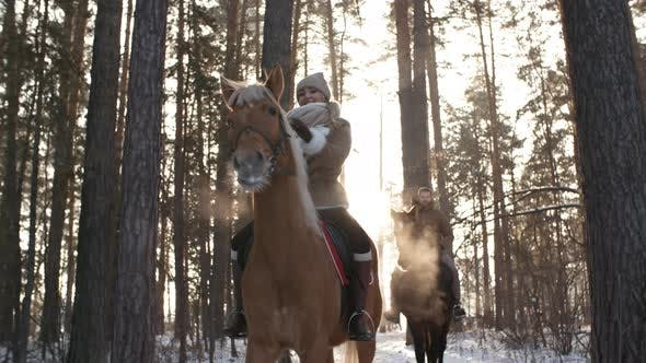 Thumbnail for Woman and Man Riding Horses through Forest