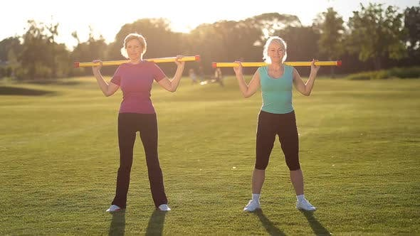 Thumbnail for Sporty Ladies Doing Fitness Exercise with Fitbar
