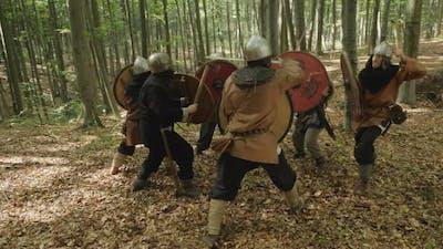 Viking warriors fighting