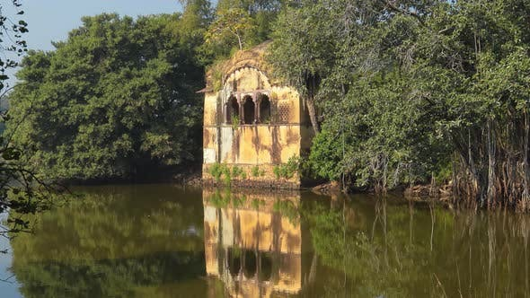 Thumbnail for Jungle India, Ranthambore National Park Rajasthan India, Beautiful Nature of India