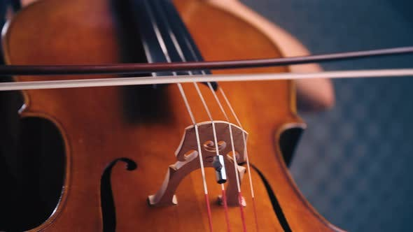 Thumbnail for Female Cello Player Playing Violoncello