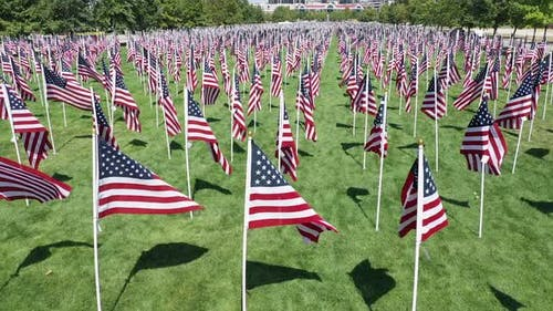 Park filled with American Flags waving in the wind