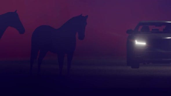 Cover Image for Horses and SUV Off-Road Vehicle