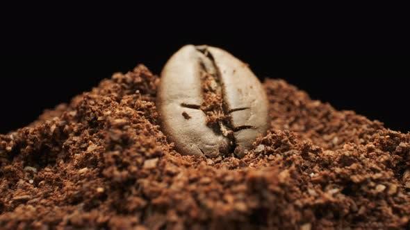 Single Coffee Bean And Ground Coffee. Macro Shot.
