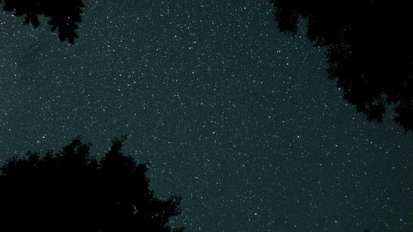 Thumbnail for Starry Sky Through Frame Of Tree Branches