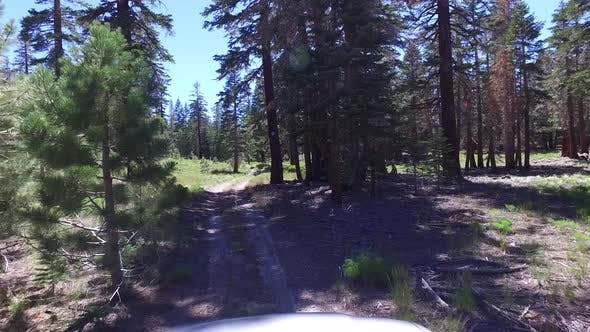 Thumbnail for POV view of a 4x4 vehicle driving off-road on a dirt road.