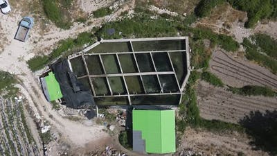 Pool Compartments Fishes Drone Farm