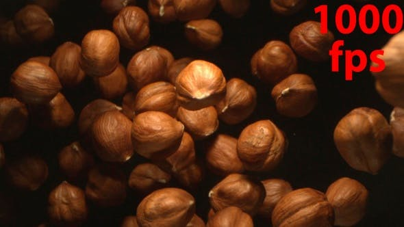 Hazelnut Nuts Flying In The Air In A Free Fall In Slow Motion On Black Background