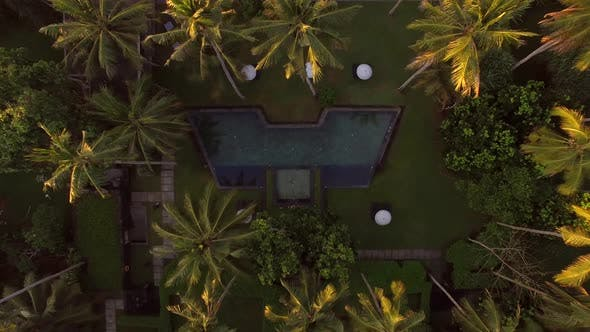 Thumbnail for Aerial view of swimming pool between palm trees, Bali island, Indonesia.