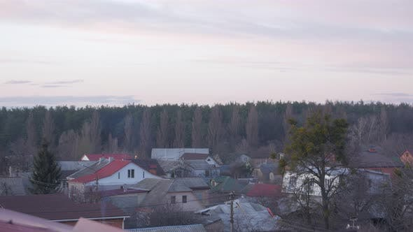 Forest And Suburb Houses