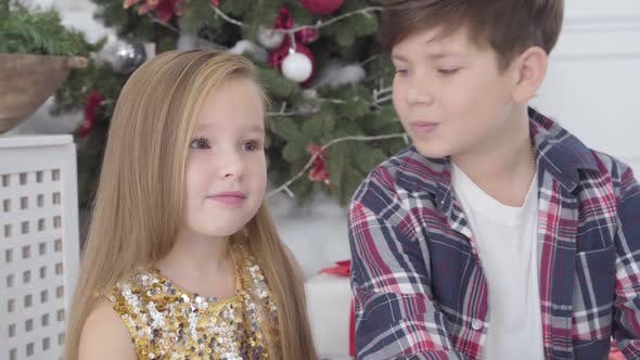 Close-up Portrait of Caucasian Boy Kissing Cute Girl on Cheek Under Christmas Tree. New Year's Eve