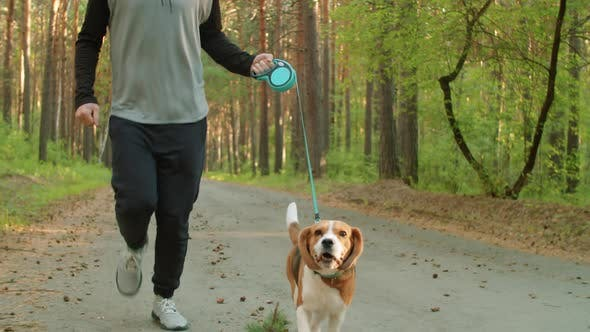 Thumbnail for Young Man Jogging with Dog and Looking at Camera