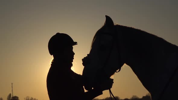 Thumbnail for Woman Kisses a Horse at Sunset