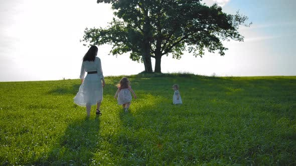 Thumbnail for Young Mother and Two Little Daughters Walking Across the Field Towards Lonely Oak Tree with Swings.