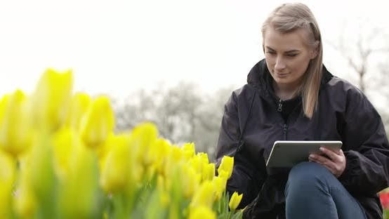Thumbnail for Female Researcher Walking While Examining Tulips At Field