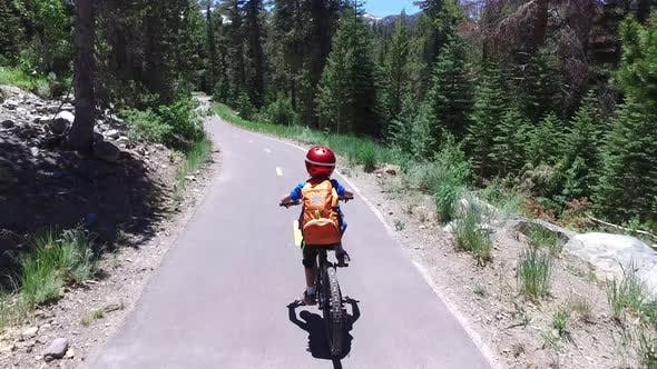 Thumbnail for A boy rides his mountain bike on a paved trail in the woods.