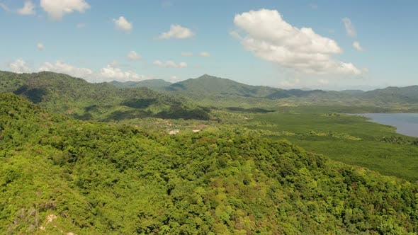 Tropical Forest and Mountains, Palawan, Philippines