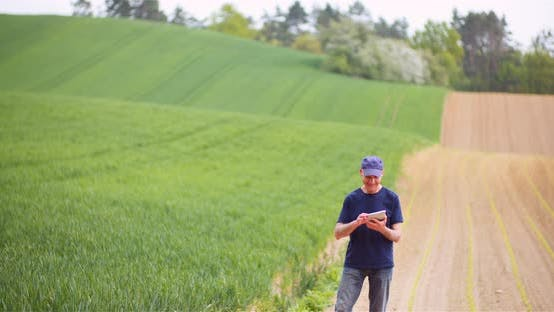 Cover Image for Agriculture Farmer Working on Digital Tablet Computer