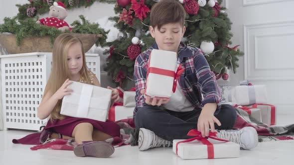 Thumbnail for Pretty Caucasian Girl and Boy Putting Geschenke unter Weihnachtsbaum drinnen. Kinder drehen sich zurück