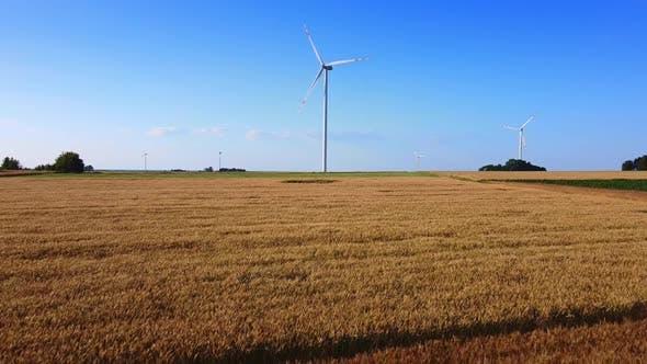 Wind Energy Turbines Near the Wheat Field